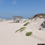 o-PADRE-ISLAND-NATIONAL-SEASHORE-570