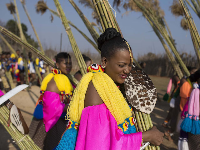 epa04906584 A picture made available on 31 August 2015 shows Swazi maidens as they deliver their reeds that they cut to the King Mswati III of Swaziland at the Ludzidzini Royal Village during the annual Reed Dance ceremony, Manzini, Swaziland, 31 August 2015. The Reed Dance ceremony is an annual Swazi and Zulu tribal cultural event and is a rights of passage event for maidens to reach adult hood. The maidens cut the reeds over the days and weeks prior to the event. Many are from rural areas of the Swazi Kingdom.  EPA/IHSAAN HAFFEJEE