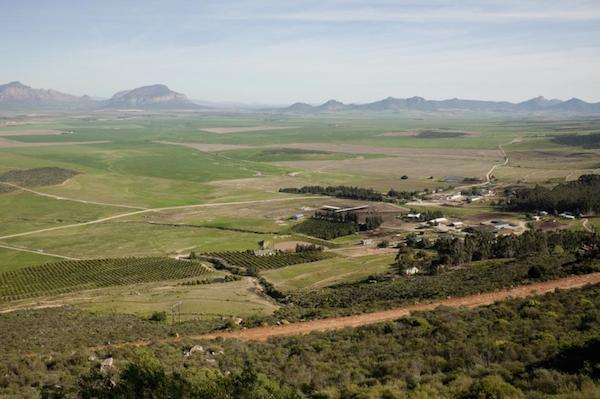 Swartland-Valley