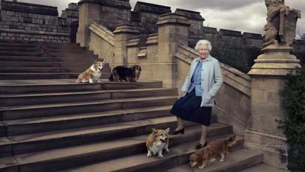 The Queen on steps at the rear of the East Terrace and East Garden with her four dogs, her corgis Willow and Holly and dorgis Vulcan and Candy
