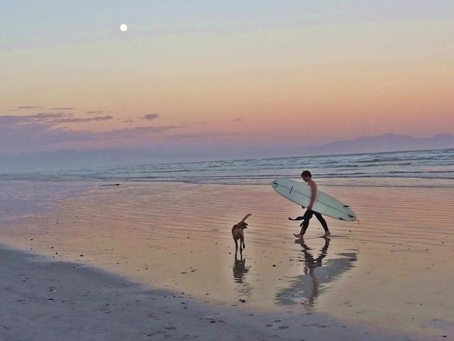 Surf-Buddies-Bow-Wow-and-Hamish-after-catching-waves-together-at-Muizenberg-beach1