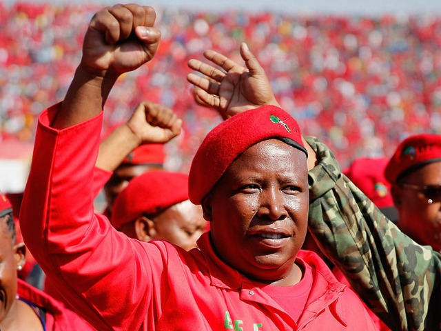 PRETORIA, SOUTH AFRICA - MAY 04:  Commander and chief of the Economic Freedom Fighters and South African presidential candidate Julius Malema greets supporters as he enters the Lucas Moripe Stadium for an Economic Freedom Fighters presidential campaign rally at the Lucas Moripe Stadium on May 4, 2014 in Pretoria, South Africa. The rally comes prior to the South African presidential elections which are scheduled to be held on May 7, 2014. (J. Countess/Getty Images)