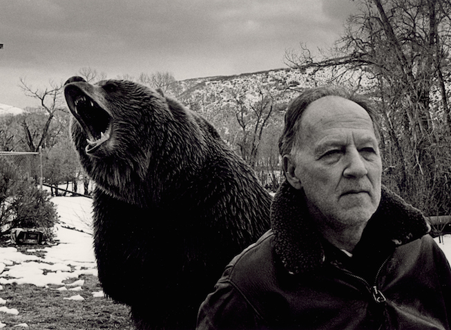 herzog-grizzly-man