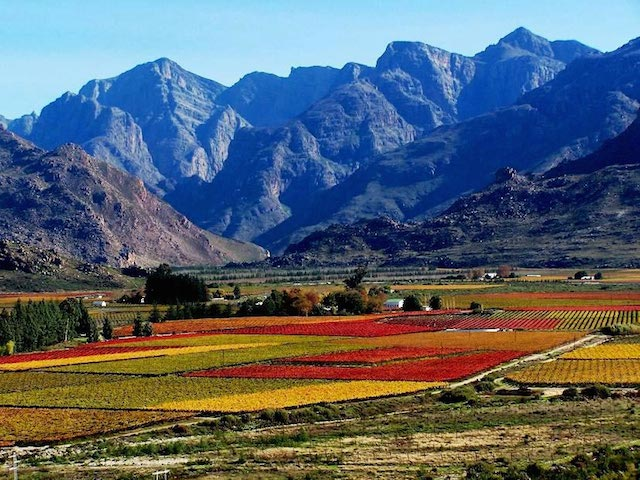 cape-winelands-worcester-paarl-region-l