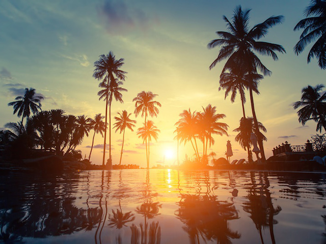 Palm trees silhouette at amazing sunset on the beach in the Thailand tropics.