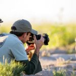 Will photographing meerkats in Botswana