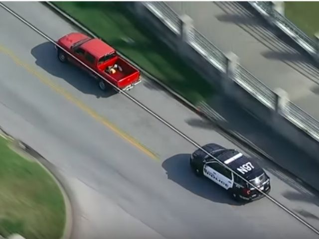 car chase, USA, video